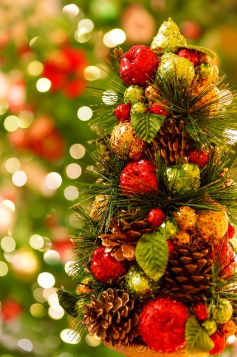 Families Resource Group Christmas Party: December 6th